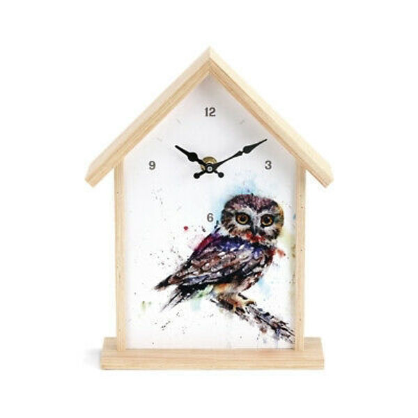Picture of Saw Whet Owl Birdhouse Watercolor Wood and Canvas Wall Shelf Clock