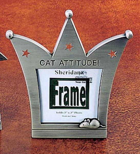 Picture of Cat Attitude Frame