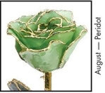 Picture of Lacquer Dipped Gold Trim Rose (August)