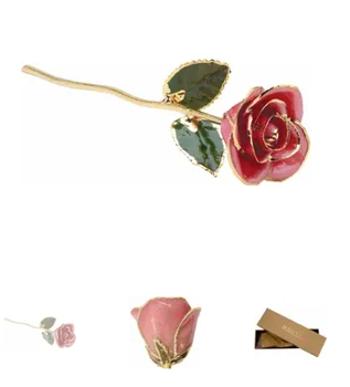 Picture of PINK ROSE W/GOLD TRIM