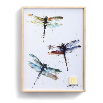 Picture of DC Dragonflies Wall Art
